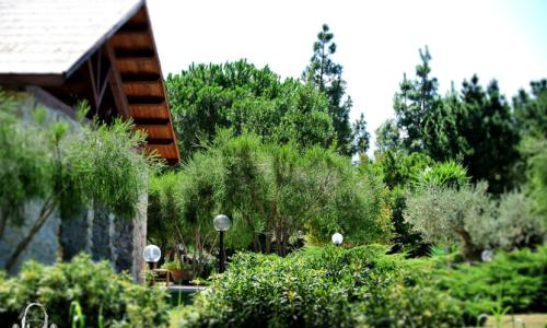 SWEET ANNA – Pasticceria a domicilio